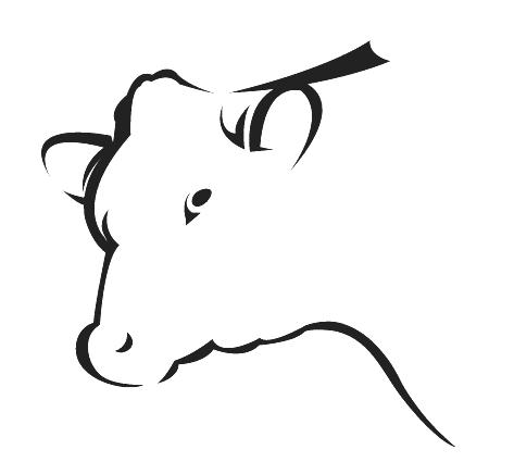 корова уход и содержание