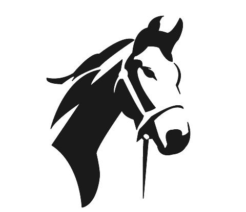 лошадь уход и содержание